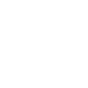 """Черноморски  солници"" АД"